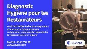 Template Diagnostic pour les restaurateurs